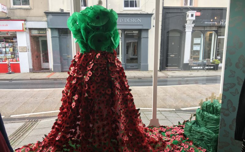 PIC FROM MERCURY PRESS (PICTURED: SARAH MORGANS REMEMBRANCE DAY DRESS MADE FROM 3,000 POPPIES IN THE WINDOW OF HER BOUTIQUE IN MENAI BRIDGE, WALES)A boutique owner has designed a Remembrance Day dress made from 3,000 poppies in tribute to Britains fallen soldiers  and it is so striking it has nearly caused car crashes. Sarah Morgan, who owns Butterfly Boutique in Menai Bridge, Wales, said her floral fashion has been attracting so much attention distracted drivers have almost crashed outside her shop. The amazing dress features huge handmade green and red poppies with sequined centres for the bodice and a full floor-length skirt made of traditional paper poppies. Sarah was given 4,500 poppies from the Royal British Legion to make the gown with colleagues Simone Lewis and Laurie Williams spending 24 hours stitching each flower into the dress tulle skirt. SEE MERCURY COPY