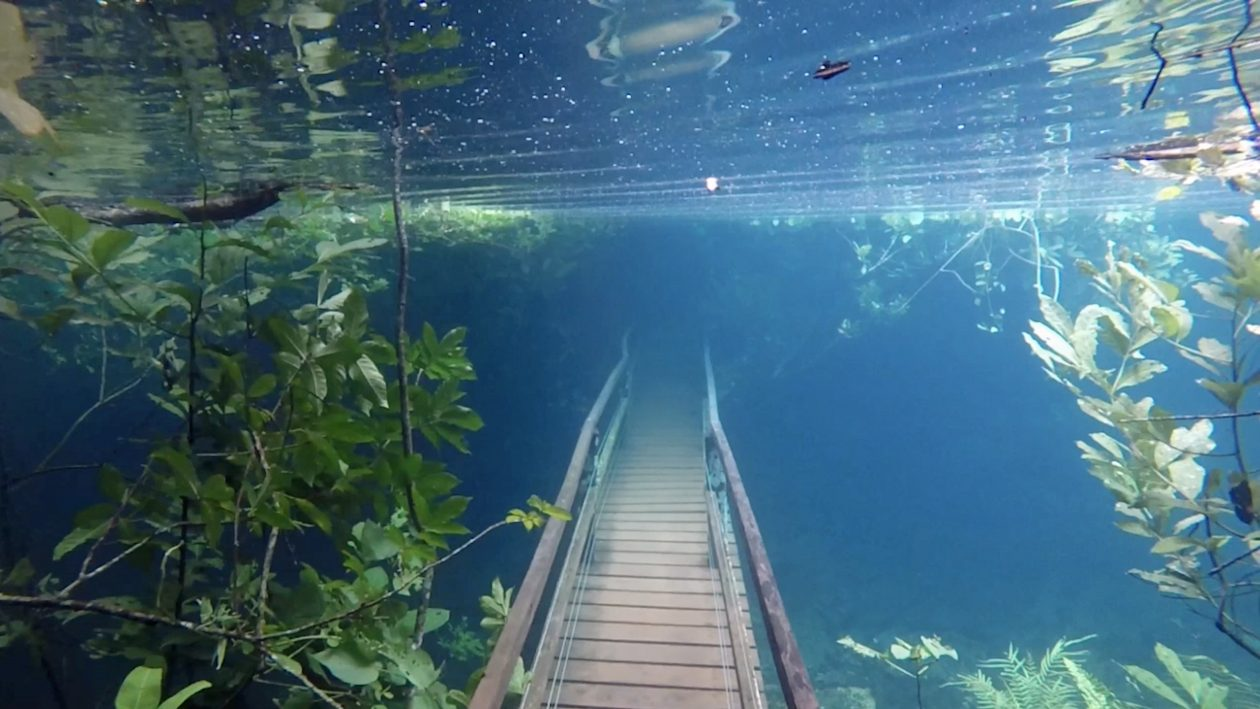 Stunning Nature Path Submerged In Water Following Rare